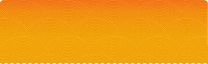 medicare orange textured banner