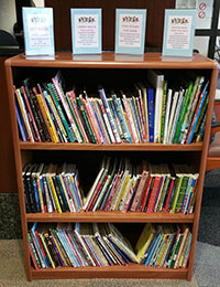 Encouraging Children To Read One Bookshelf At A Time