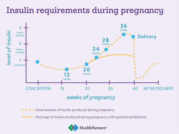 Insulin requirements during pregnancy [Chart]