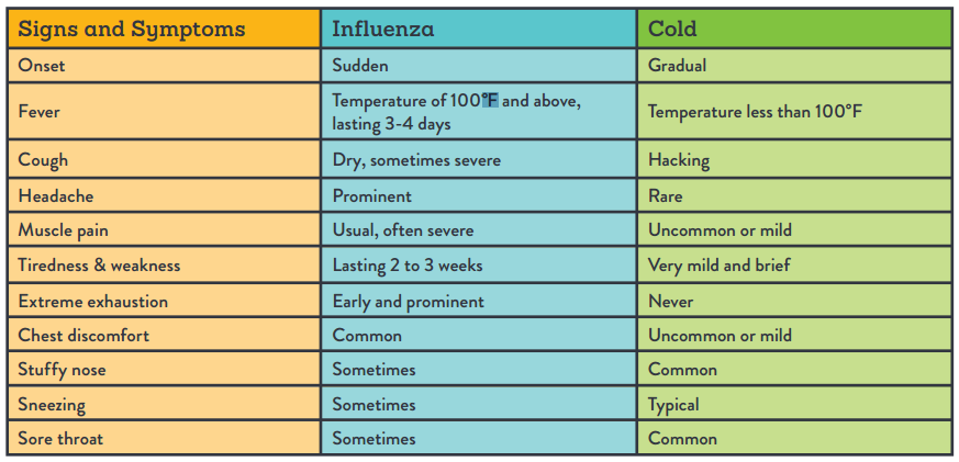 Spotting cold versus flu symptoms healthpartners